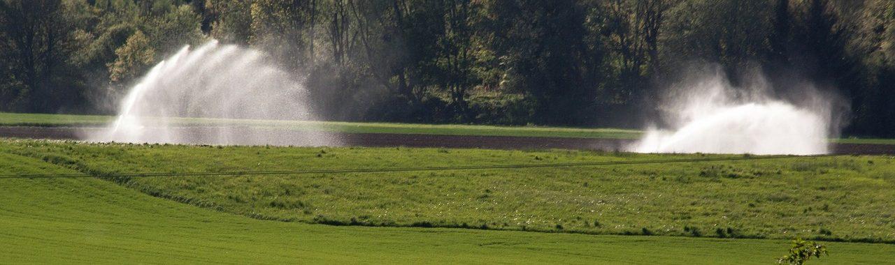 Costes a tener en cuenta al instalar un sistema de riego