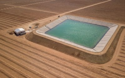 Mantenimiento de instalaciones de riego por goteo – Autor: Miguel Ángel Monge